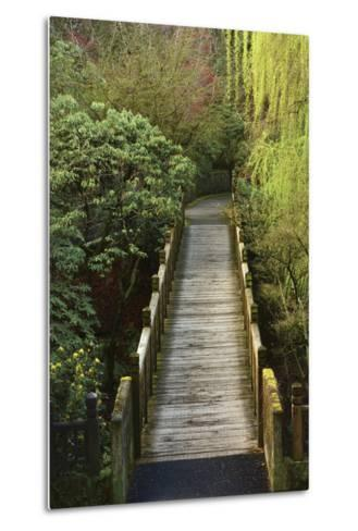 Bridge, Crystal Springs Rhododendron Garden, Portland, Oregon, Usa-Michel Hersen-Metal Print