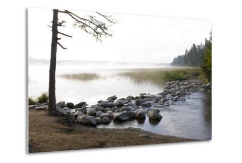 USA, Minnesota, Itasca State Park, Mississippi Headwaters-Peter Hawkins-Metal Print