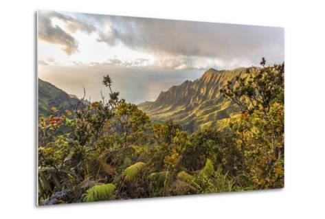 Overlooking the Kalalau Valley Right before Sunset-Andrew Shoemaker-Metal Print