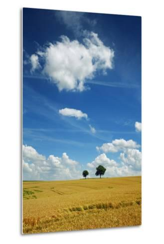 Wheat Field and Cumulonimbus Clouds-Frank Krahmer-Metal Print