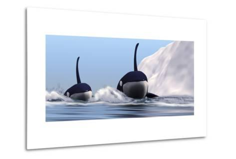 Two Orca Whales Pass Near an Iceberg in the North Arctic Ocean--Metal Print