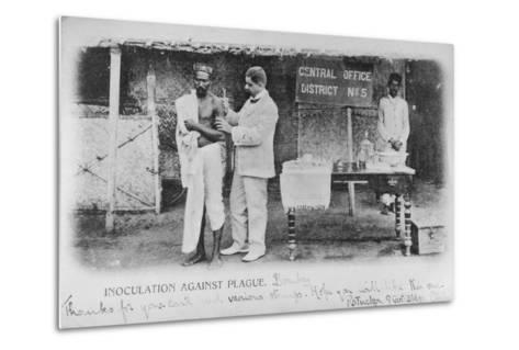 Inoculation Against Plague in Bombay, Early 20th Century--Metal Print