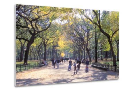 The Mall, Central Park, Manhattan, New York, USA-Peter Bennett-Metal Print