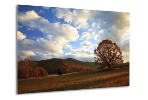 Sunrise in the Fall, Cades Cove, Smoky Mountains NP, Tennessee, USA-Joanne Wells-Metal Print