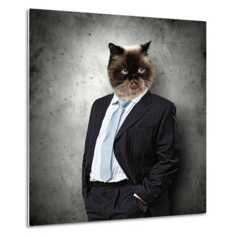 Funny Fluffy Cat In A Business Suit Businessman. Collage-Sergey Nivens-Metal Print