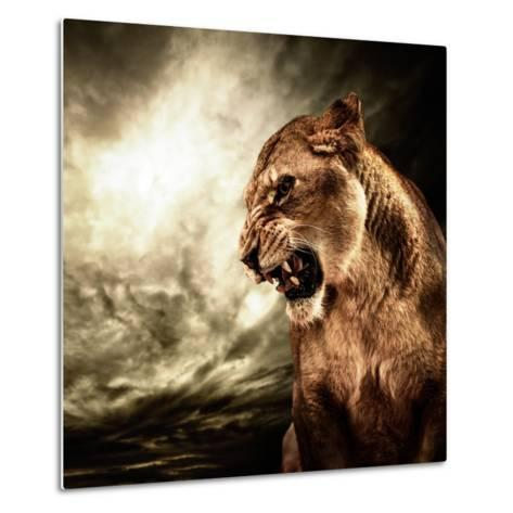Roaring Lioness Against Stormy Sky-NejroN Photo-Metal Print