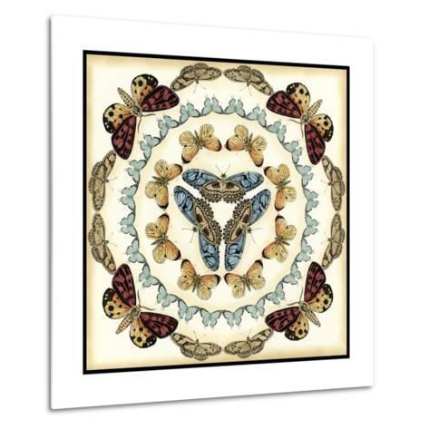 Butterfly Collector IV-Chariklia Zarris-Metal Print