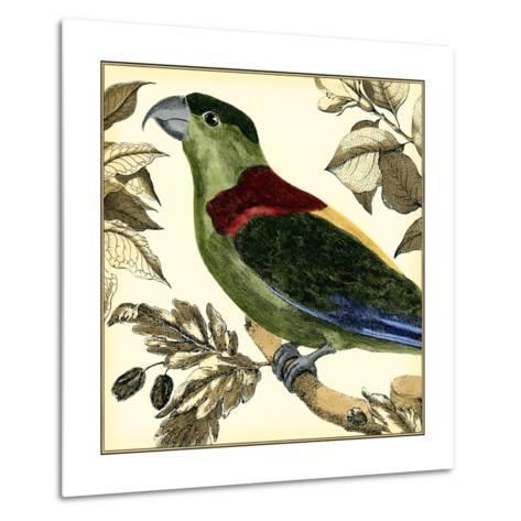 Tropical Parrot IV-Martinet-Metal Print