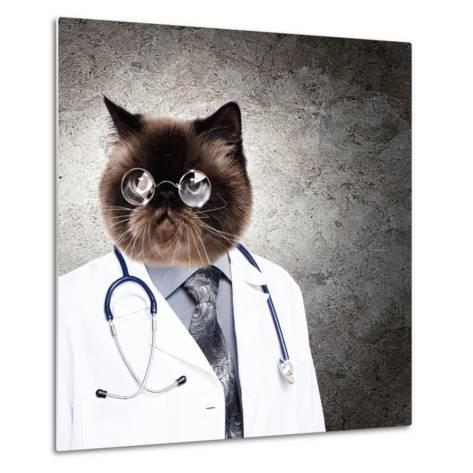 Funny Fluffy Cat Doctor In A Robe And Glasses. Collage-Sergey Nivens-Metal Print