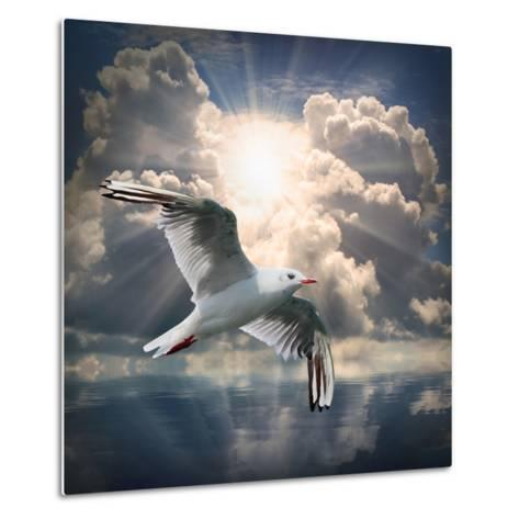 The Seagull Flying Over A Sea Against A Dramatic Sky. Background From Nature-Kletr-Metal Print