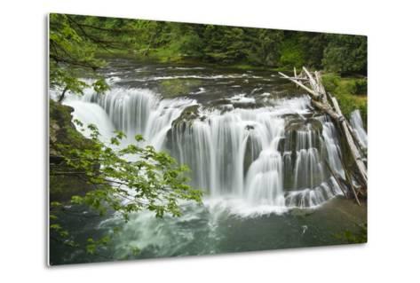 Lower Lewis Falls, Lewis River, Cougar, Washington, Usa-Michel Hersen-Metal Print