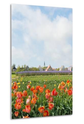 Small Village Den Hoorn with White Church at Dutch Wadden Island Texel-Ivonnewierink-Metal Print