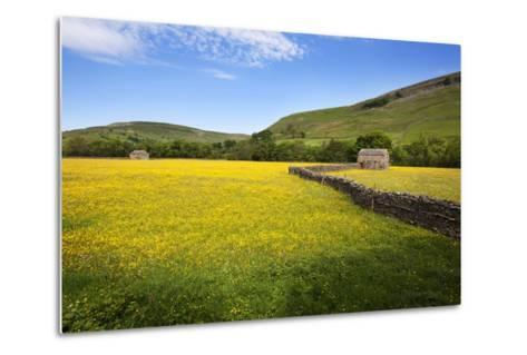 Field Barns and Buttercup Meadows at Muker-Mark Sunderland-Metal Print