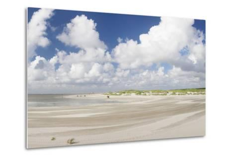 Dunes at a Beach, Sankt Peter Ording, Eiderstedt Peninsula, Schleswig Holstein, Germany, Europe-Markus Lange-Metal Print