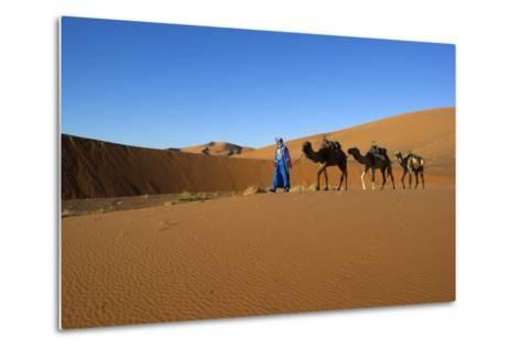 Moroccan Camel Driver-Stuart Black-Metal Print