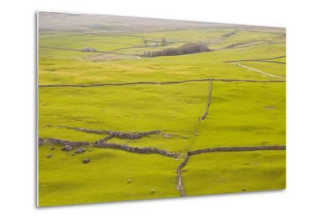 Typical Yorkshire Dales Countryside, Yorkshire, England, United Kingdom, Europe-Julian Elliott-Metal Print