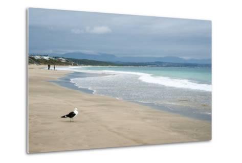 Indian Ocean Shoreline, Mosselbay, Garden Route, Western Cape, South Africa, Africa-Kim Walker-Metal Print