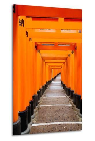 Red Torii Gates, Fushimi Inari Taisha Shrine, Kyoto, Kansai Region, Honshu, Japan, Asia-Gavin Hellier-Metal Print