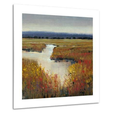 Marsh Land I-Tim O'toole-Metal Print