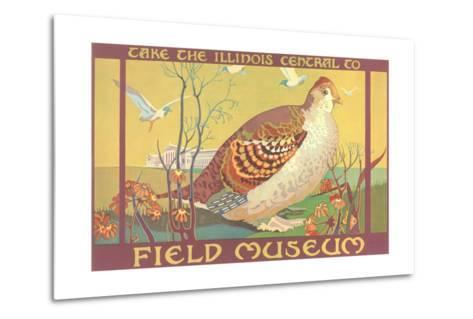 Poster for Field Museum with Quail--Metal Print