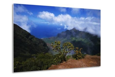 Hills along the Napali Coast-W^ Perry Conway-Metal Print