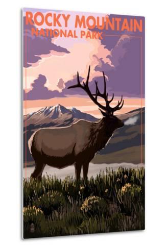 Rocky Mountain National Park - Elk and Sunset-Lantern Press-Metal Print