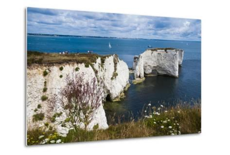 Chalk Stacks and Cliffs at Old Harry Rocks, Between Swanage and Purbeck, Dorset-Matthew Williams-Ellis-Metal Print