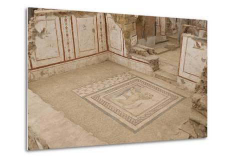 Lion Mosaic, Murals and Frescoes in a Terrace House, Curetes Street-Eleanor Scriven-Metal Print