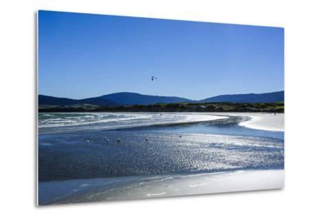 Te Waewae Bay, Along the Road from Invercargill to Te Anau, South Island, New Zealand, Pacific-Michael Runkel-Metal Print
