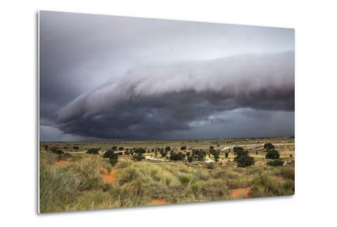 Storm Clouds Threaten the Kalahari, Kgalagadi Transfrontier Park in Summer, Northern Cape-Ann and Steve Toon-Metal Print