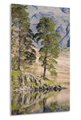 Early Morning Reflections, Blea Tarn, Above Little Langdale-Ruth Tomlinson-Metal Print