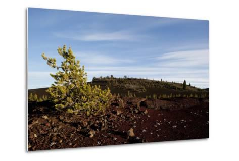 Volcanic Lava Fields, Craters of the Moon National Monument, Idaho-Paul Souders-Metal Print