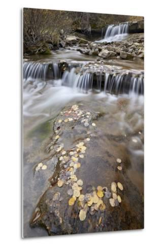 Falls on the Big Bear Creek in the Fall-James Hager-Metal Print