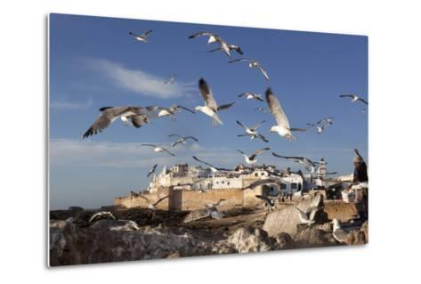 View to the Ramparts and Medina with Seagulls-Stuart Black-Metal Print