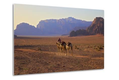 Bedouin with Camels, Wadi Rum, Jordan, Middle East-Neil Farrin-Metal Print