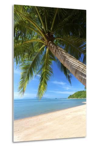 Palm Trees Overhanging Bangrak Beach, Koh Samui, Thailand, Southeast Asia, Asia-Lee Frost-Metal Print