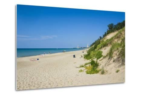 Indiana Sand Dunes, Indiana, United States of America, North America-Michael Runkel-Metal Print