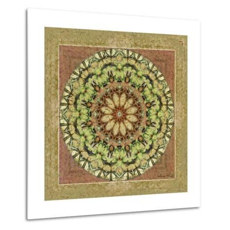 Floress Mandala IV-Catherine Kohnke-Metal Print