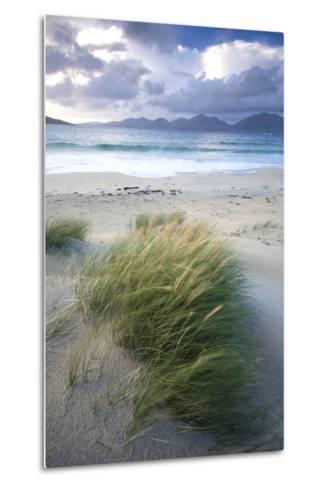 Beach at Luskentyre with Dune Grasses Blowing-Lee Frost-Metal Print