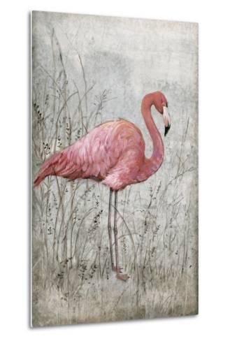 American Flamingo I-Tim O'toole-Metal Print