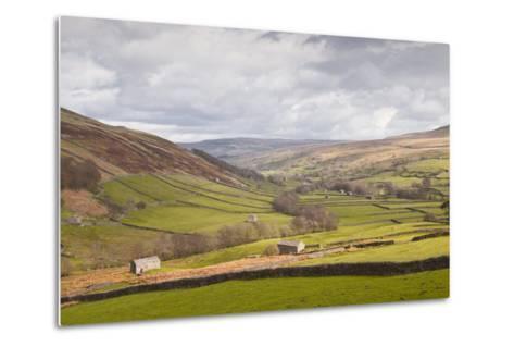 Swaledale in the Yorkshire Dales National Park, Yorkshire, England, United Kingdom, Europe-Julian Elliott-Metal Print