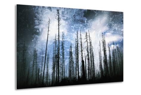 Cold Night-Ursula Abresch-Metal Print