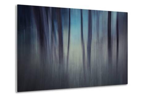 Evening Woods-Ursula Abresch-Metal Print
