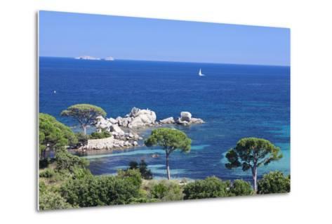 Beach of Palombaggia, Corsica, France, Mediterranean, Europe-Markus Lange-Metal Print