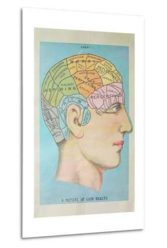 A Picture of Good Health - Vintage Cognitive Science Lithograph-Lantern Press-Metal Print