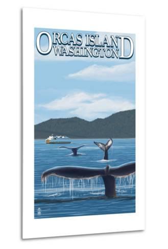 Orcas Island, WA - Whales and Ferry-Lantern Press-Metal Print