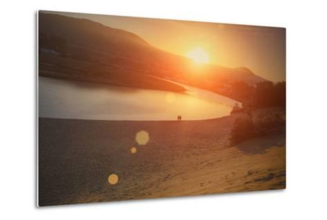 Morning Sun at Salmon Creek, Sonoma Coast California-Vincent James-Metal Print
