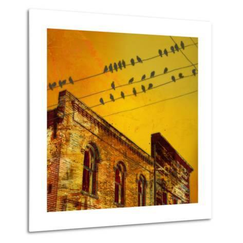 Birds on a Wire I-James McMasters-Metal Print