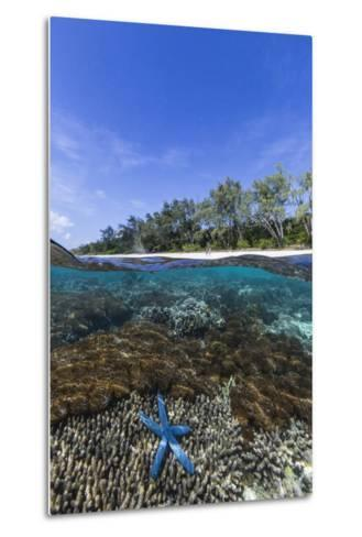 Above and Below View of Coral Reef and Sandy Beach on Jaco Island, Timor Sea, East Timor, Asia-Michael Nolan-Metal Print