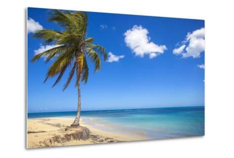 El Portillo Beach, Las Terrenas, Samana Peninsula, Dominican Republic, West Indies, Caribbean-Jane Sweeney-Metal Print